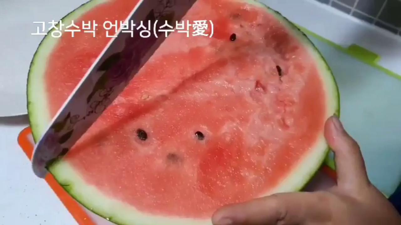 요리경연대회 당선작 : 수박애팀
